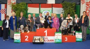 Italy 2013 Best In Show