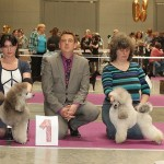 Russian Poodle Club