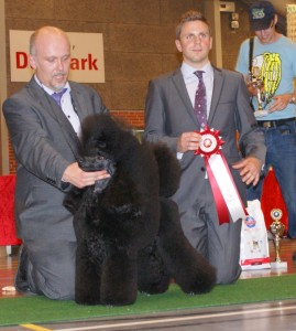 Danish Poodle Club