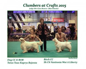 Lucy, Crufts 2015